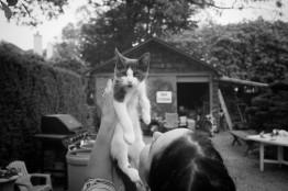 Caryn and Kitten